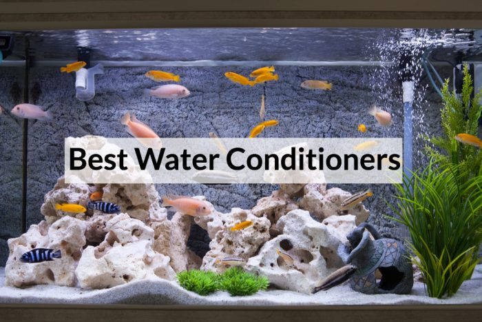 Best Aquarium Water Conditioner for 2020