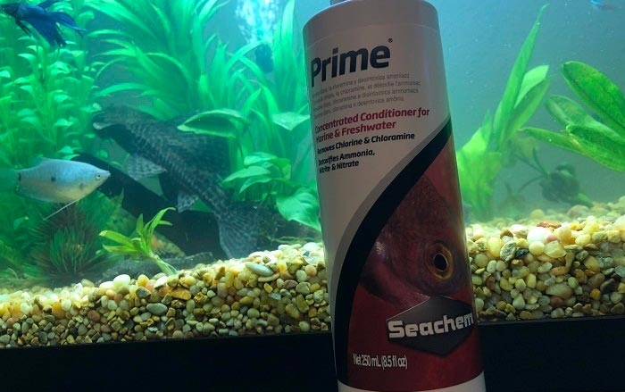 Choosing The Best Water Conditioner For Your Aquarium