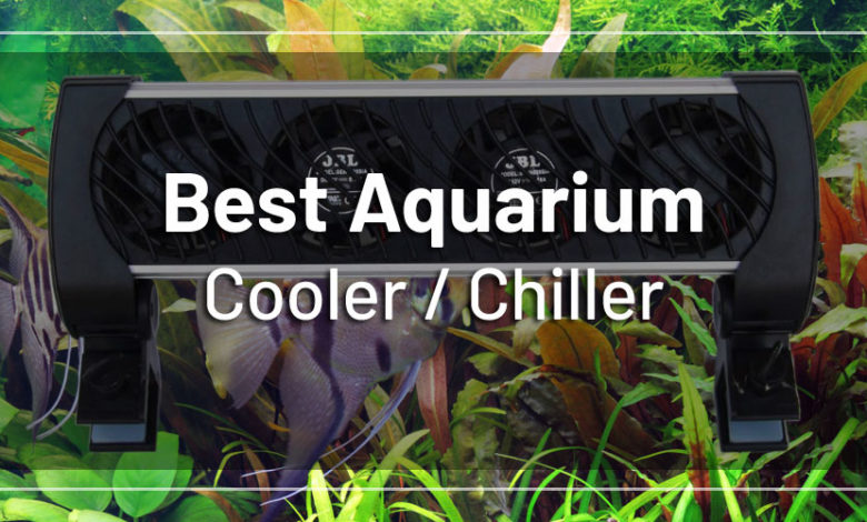 Best Chiller for Planted Aquarium 2021