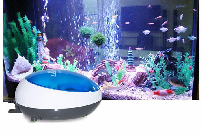 Best Aquarium Air Pump for Multiple Tanks
