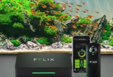 Photo of Best Freshwater Aquarium Monitoring System 2020