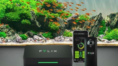 Best Freshwater Aquarium Monitoring System