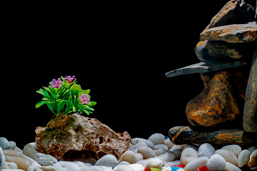 How To Decorate A Fish Tank With Rocks Whypetfish Com