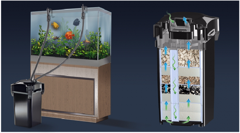 How to Choose a Canister Filter for Aquarium