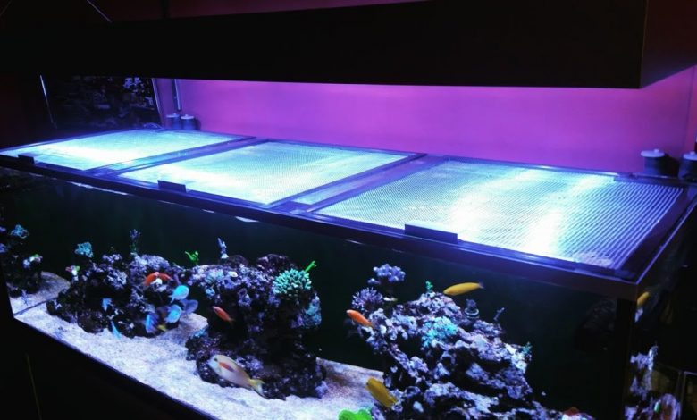 How to Make a Homemade Fish Tank Lid?