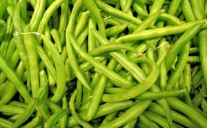 Can Fish Eat Green Beans?